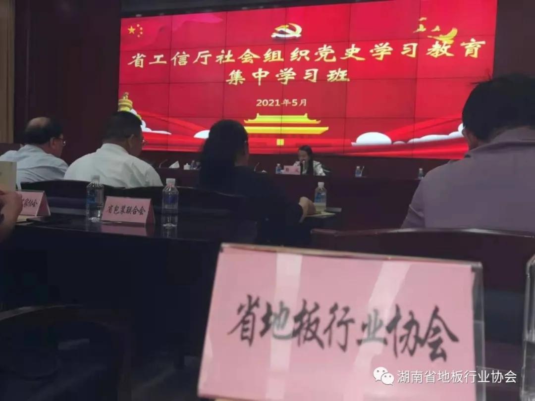 【党史教育】湘地协参加省工信厅社会组织党史学习教育集中学习班